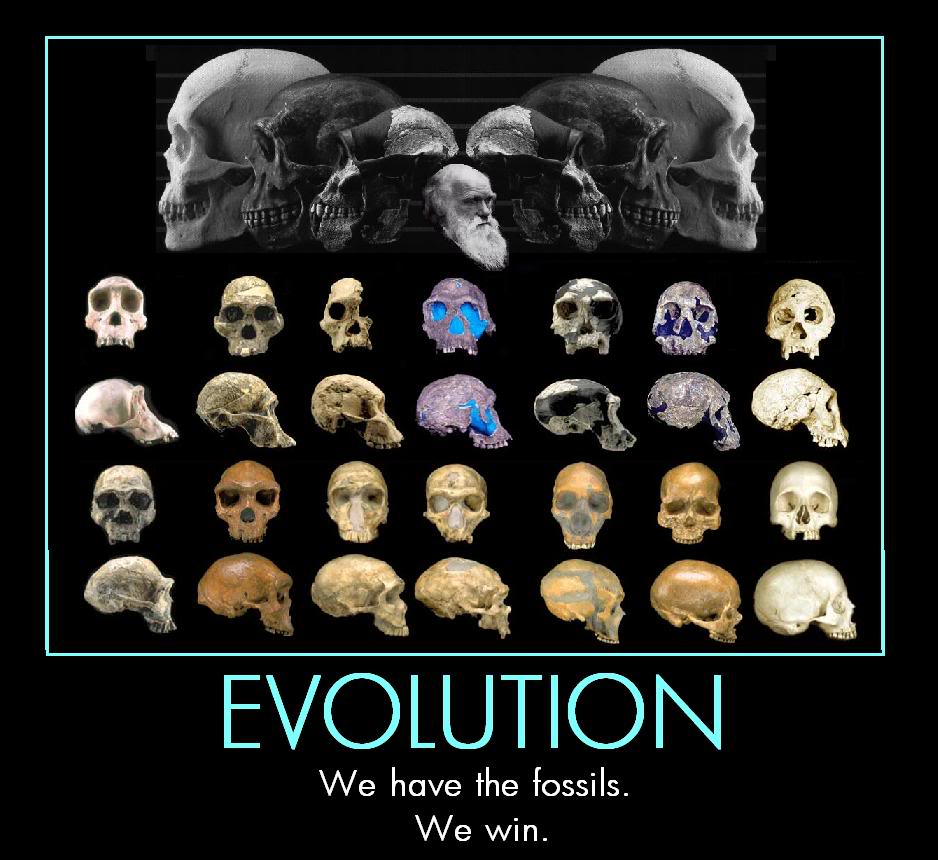 Evolution: Americans Are Ignorant Fools About Evolution–Part 2